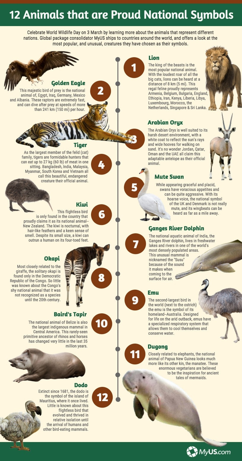 Infographic showing 12 animals that are national symbols in the world